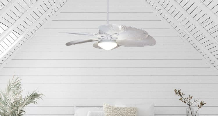 The Fiji AC fan in a hamptons styled room.